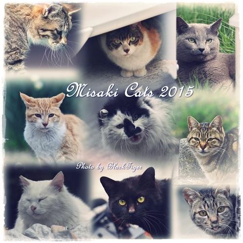 misaki2015-2.jpg