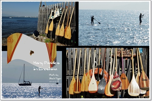 paddle3.jpg